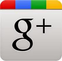 Tutorial básico Google +
