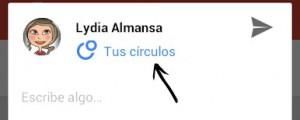 detalle google +