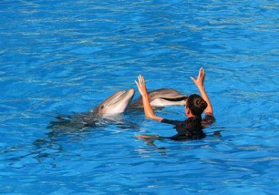 Turismo con niños en Tenerife