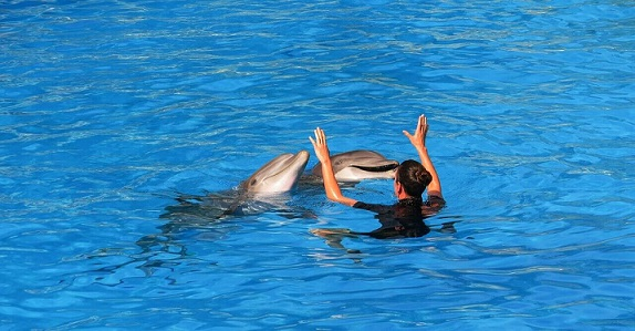 Turismo con niños en Tenerife, una opción que nunca falla